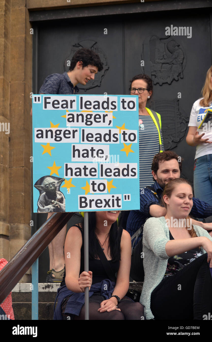 Pro EU rally held after Brexit referendum voted for the UK to leave the EU, Norwich July 2016, UK, Norwich voted - Stock Image
