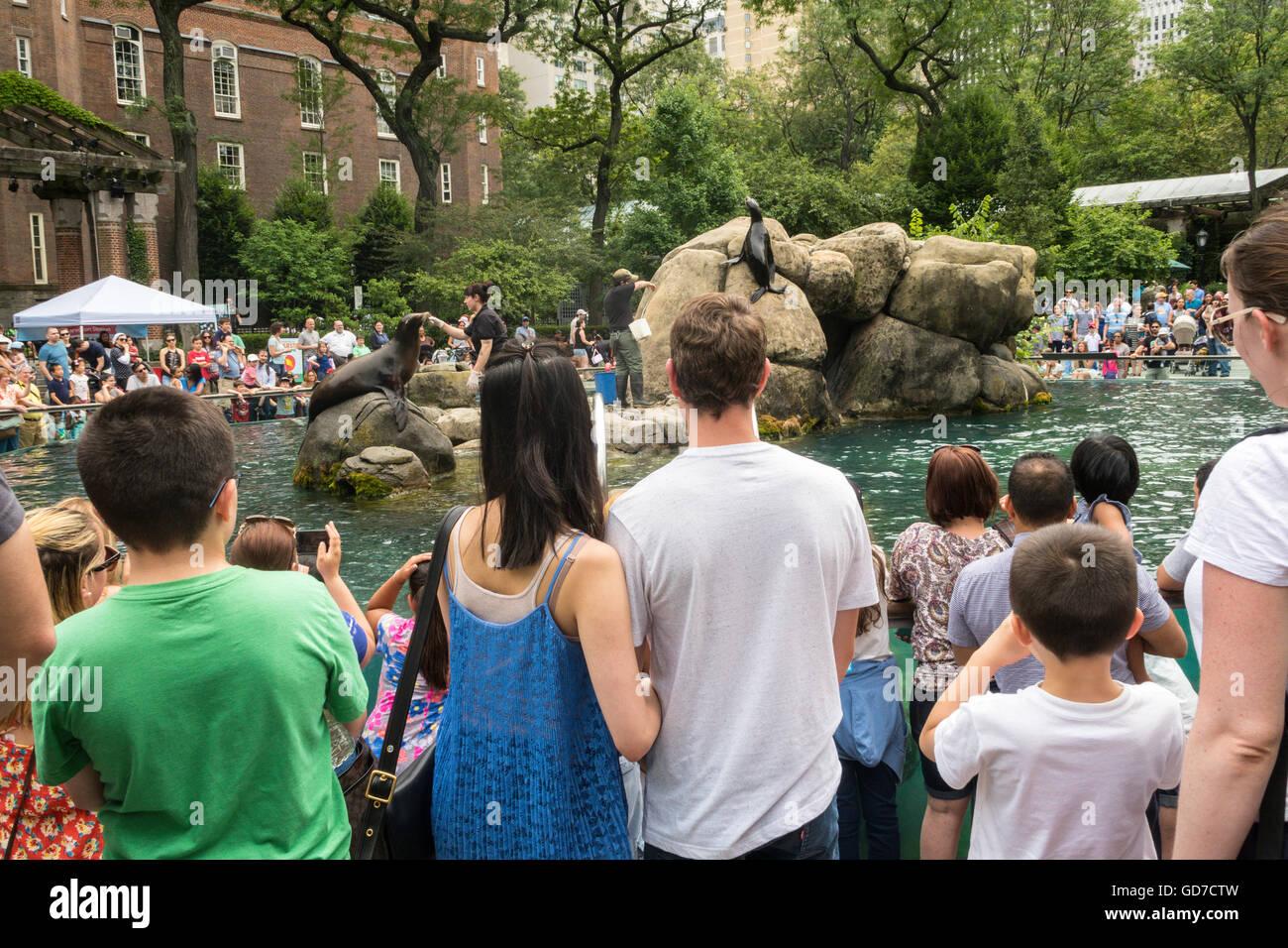 Central Park Zoo, NYC, USA Stock Photo