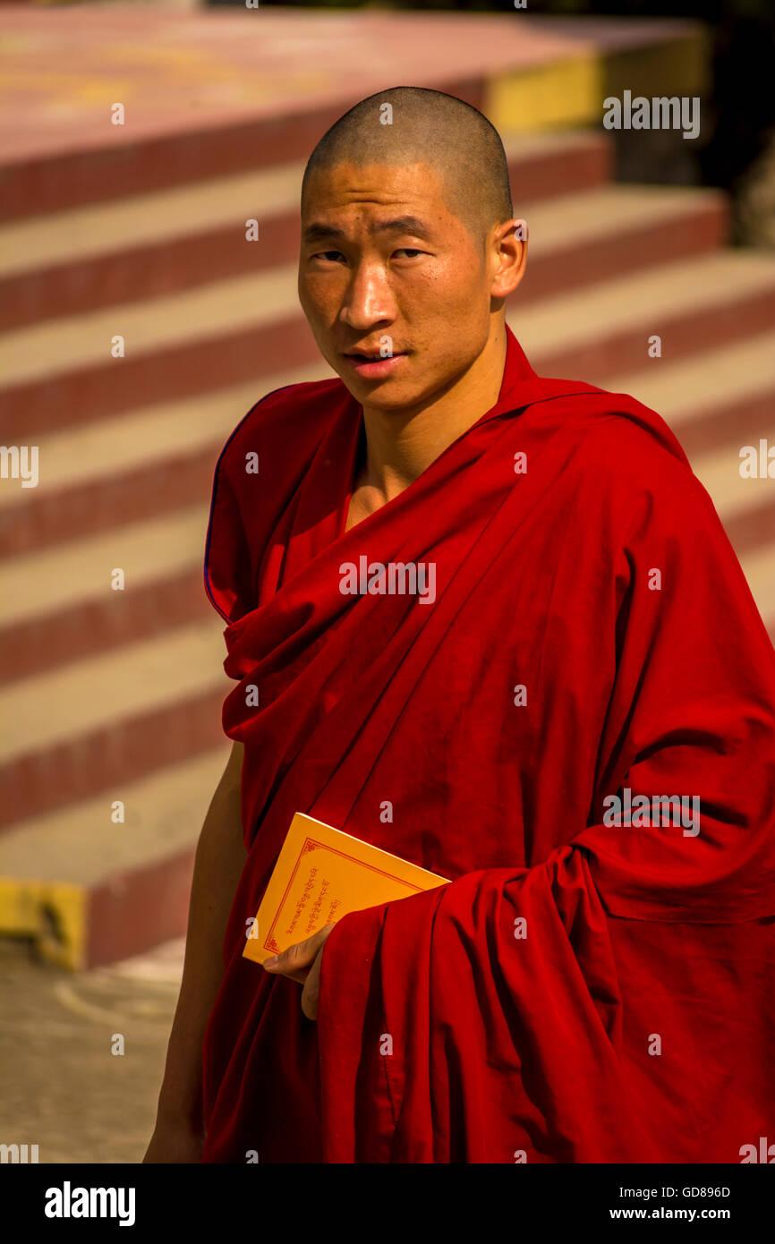 Portrait of Gyuto Tibetan Buddhist monk at monastery Dharamsala India - Stock Image