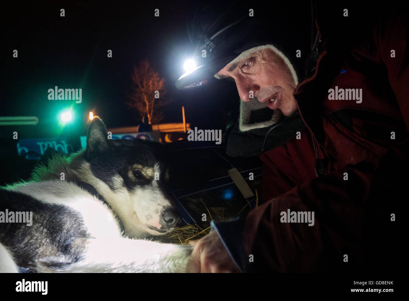 Portrait of a musher with his dog during a sled dog competition in Norway - Stock Image