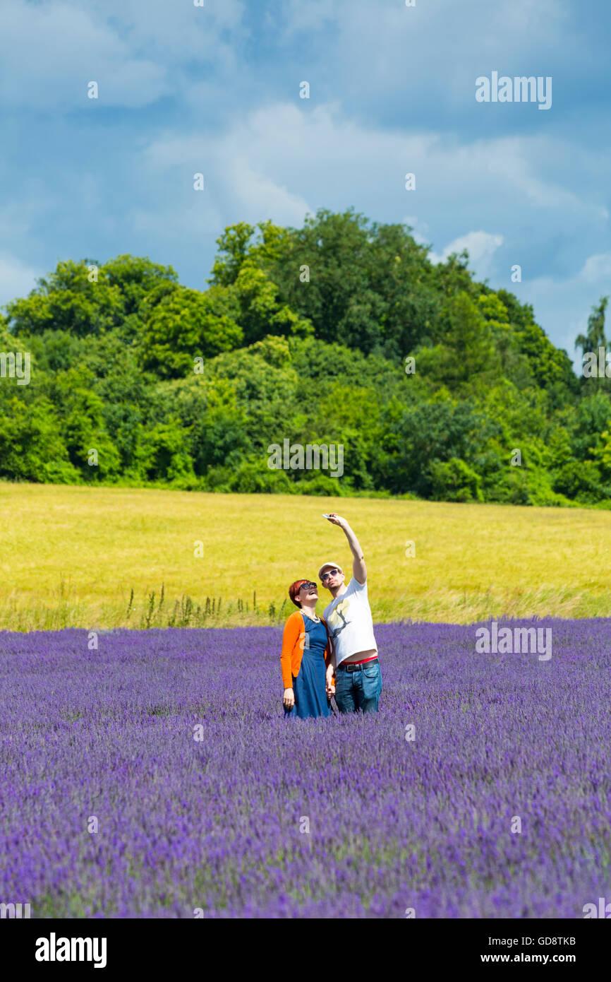 Lordington Lavender Farm, Lordington, Chichester, West Sussex, UK. 13 July, 2016. Visitors enjoy the lavender on Stock Photo