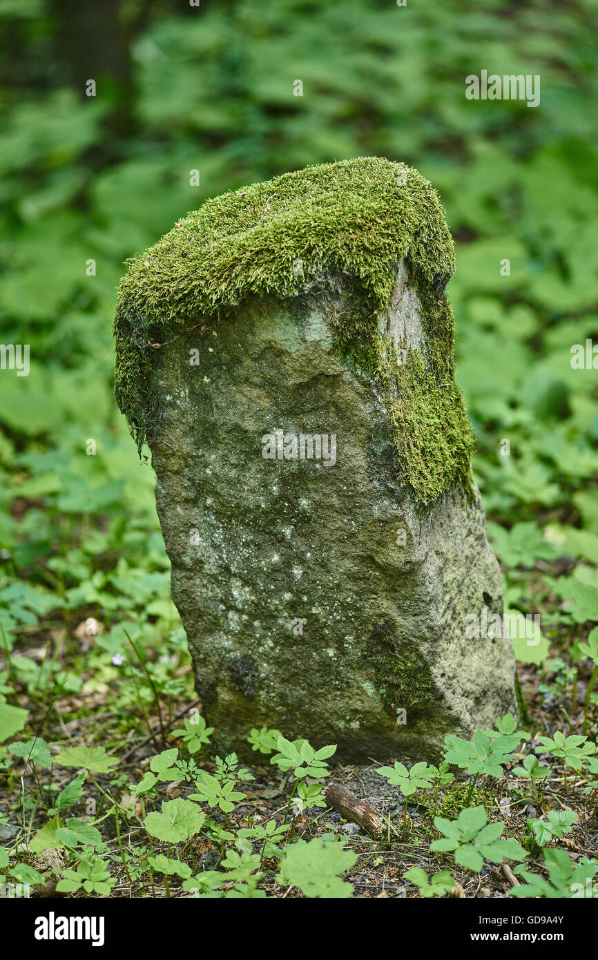 Old leaning milestone covered with moss - Stock Image