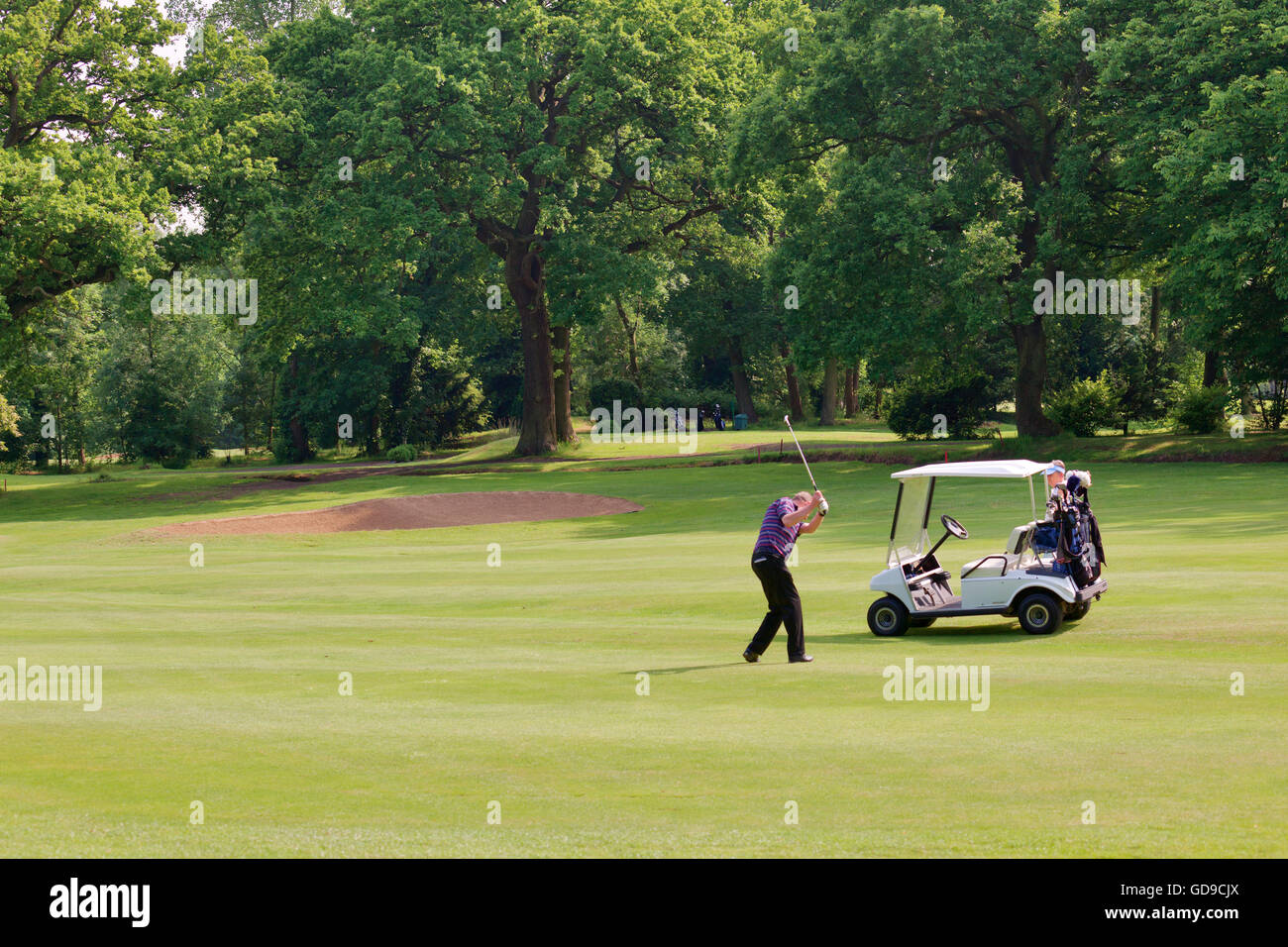 Golfers and golf buggy at Finchley Golf Club - Stock Image