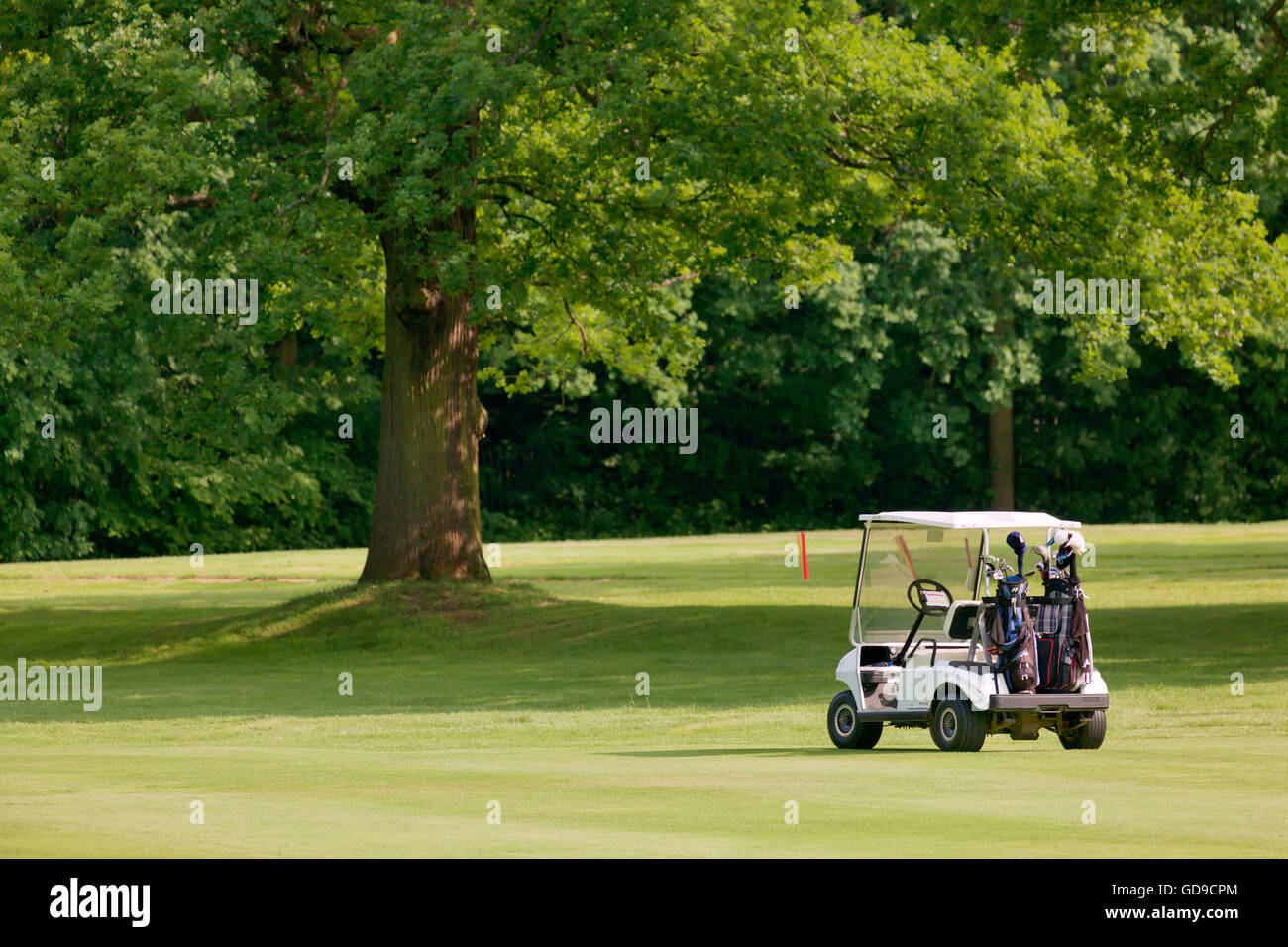 Golf buggy at Finchley Golf Club - Stock Image