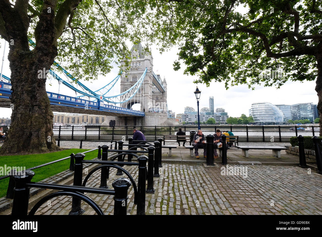 Victoria Embankment under the oak trees with Tower Bridge and the London skyline in the background - Stock Image