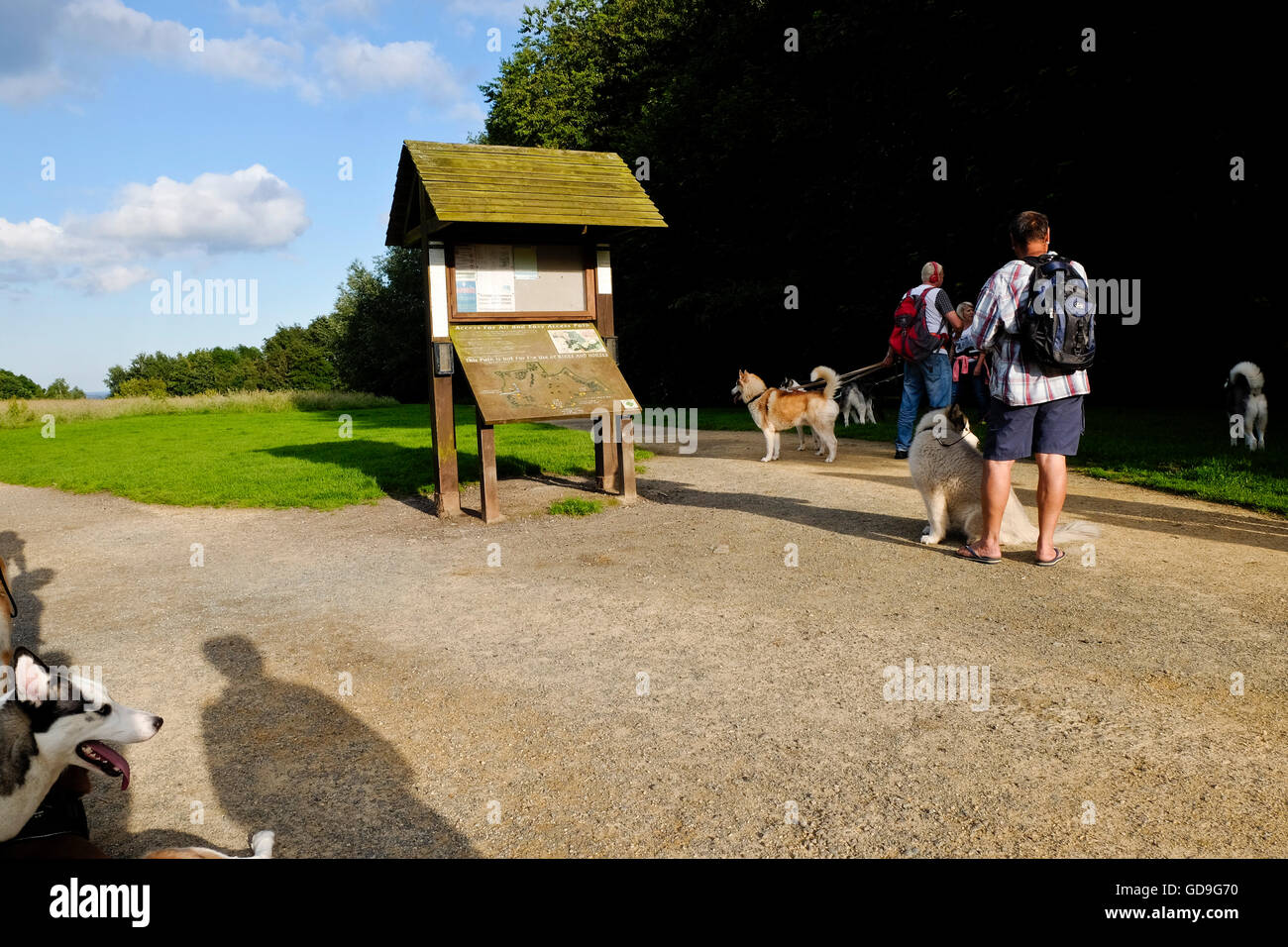 Dog owners gather at a visitors information board at Langdon Hills County Park in Essex England UK - Stock Image