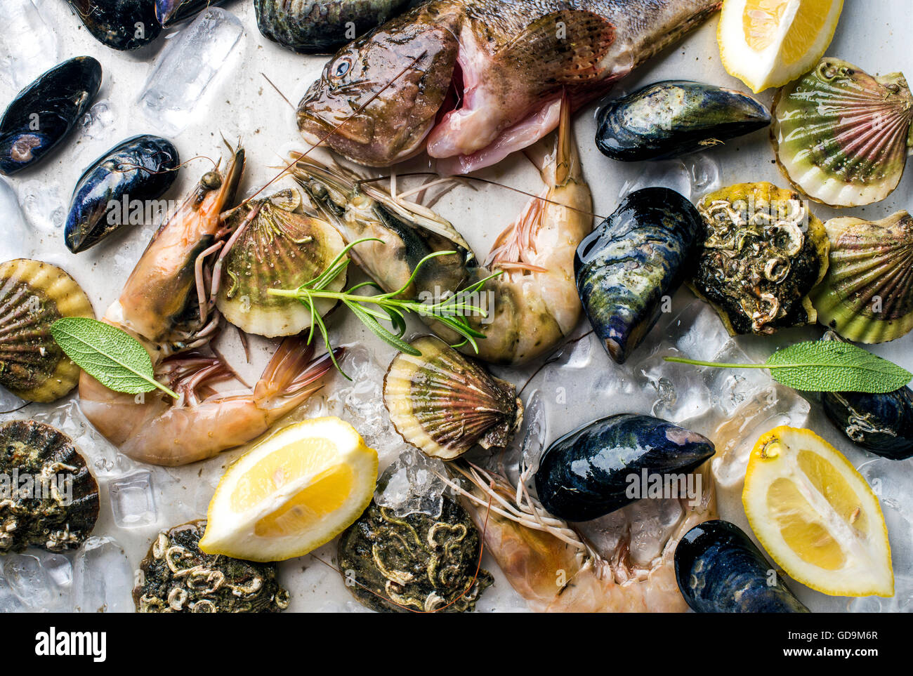 Fresh seafood with herbs and lemon slices on ice. Prawns, fish, mussels and scallops over steel metal background, - Stock Image