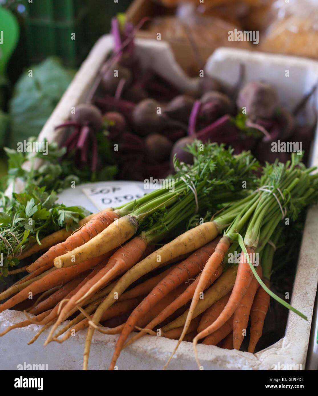 Fresh carrots at the green market - Stock Image