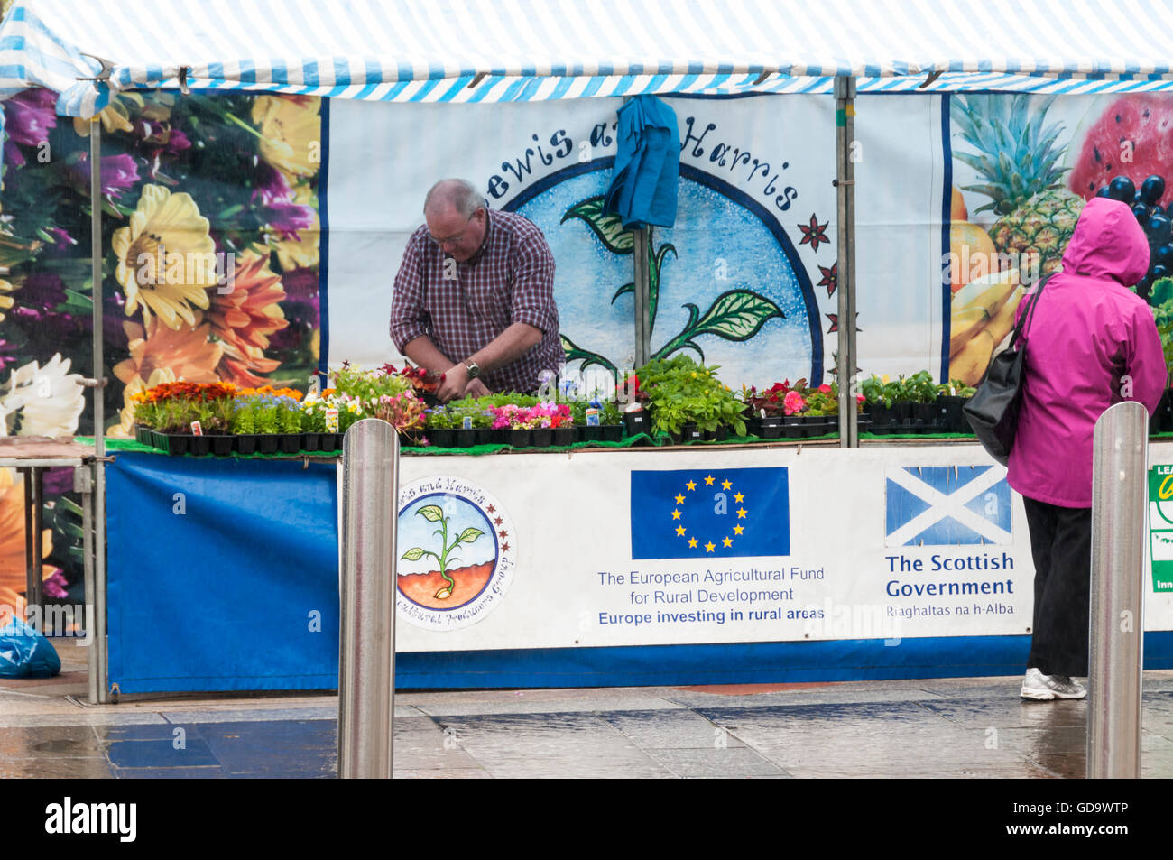 European flag and sign for European Agricultural Fund for Rural Development on a stall on Stornoway market on the - Stock Image