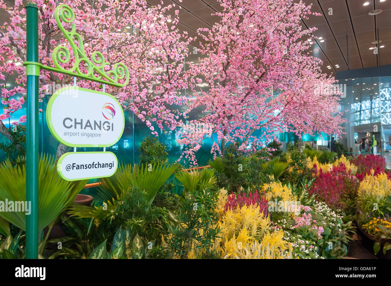 Photo Garden in Singapore Changi Airport, Changi, Singapore Stock Photo