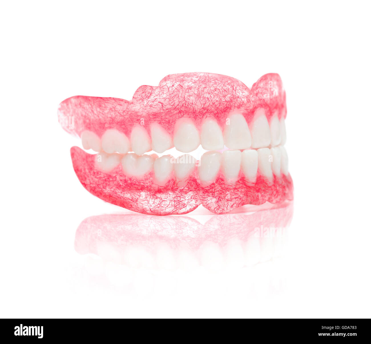 A Set of Dentures Isolated on White Background - Stock Image