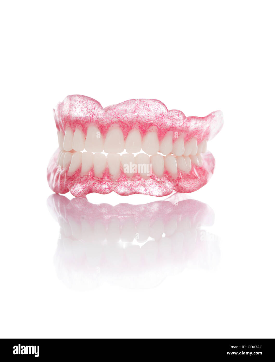 A Set of Artificial Dentures Isolated on White Background - Stock Image