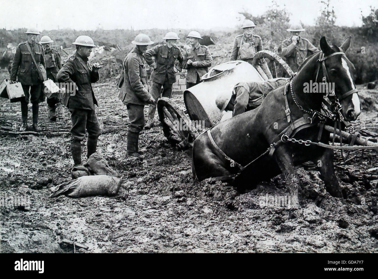 FIRST WORLD WAR  British soldiers deciding how to rescue a horse-drawn water wagon stuck in mud at St. Eloi de Fourques, - Stock Image