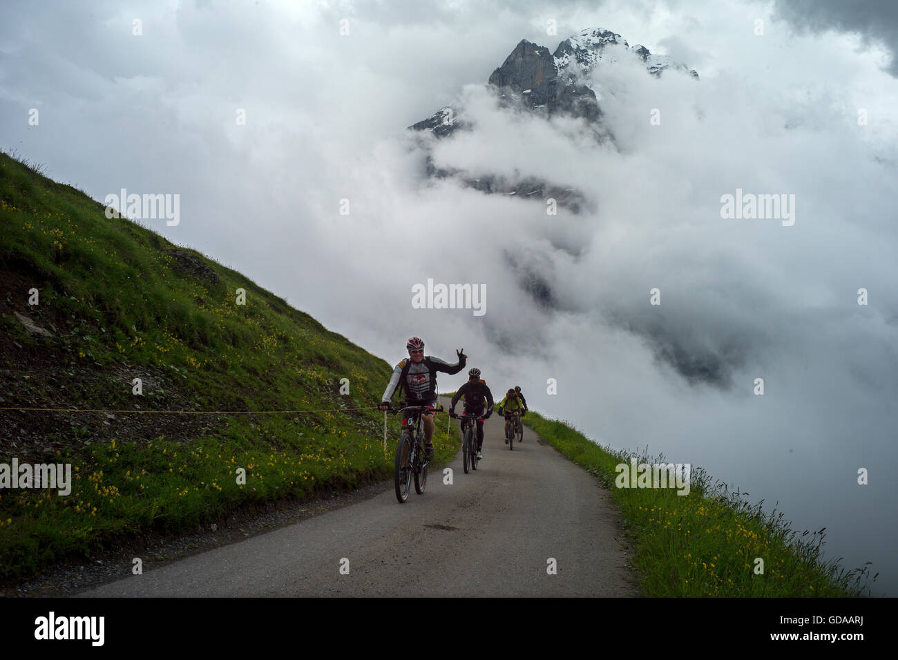Switzerland. Bernese Oberland. July 2016Walking from FIRST above Grindelwald  in the Swiss Alps to Grosse Scheidegg - Stock Image