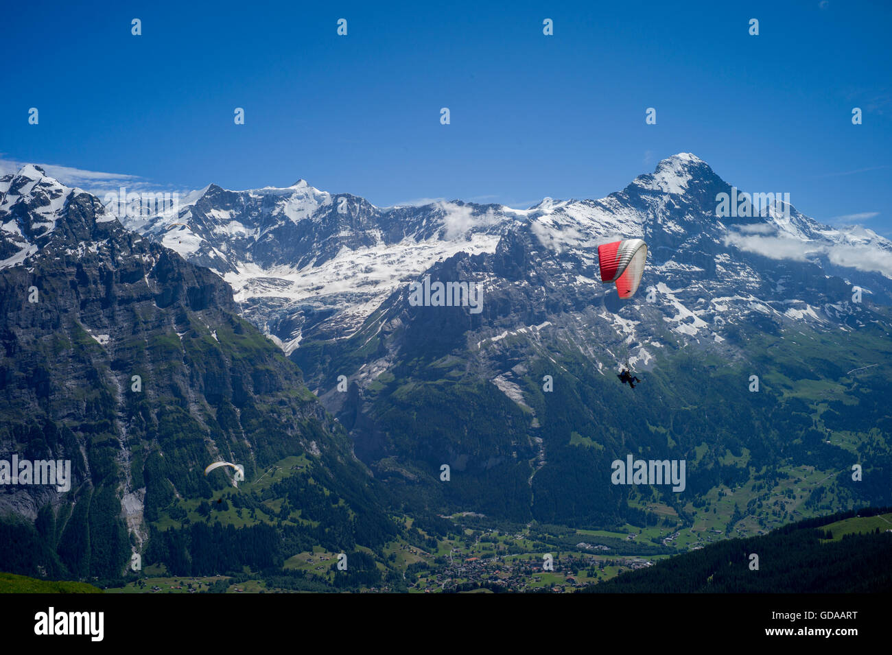 Switzerland. Bernese Oberland. July 2016 Hang Gliding from FIRST above Grindelwald  in the Swiss Alps in the Bernese - Stock Image