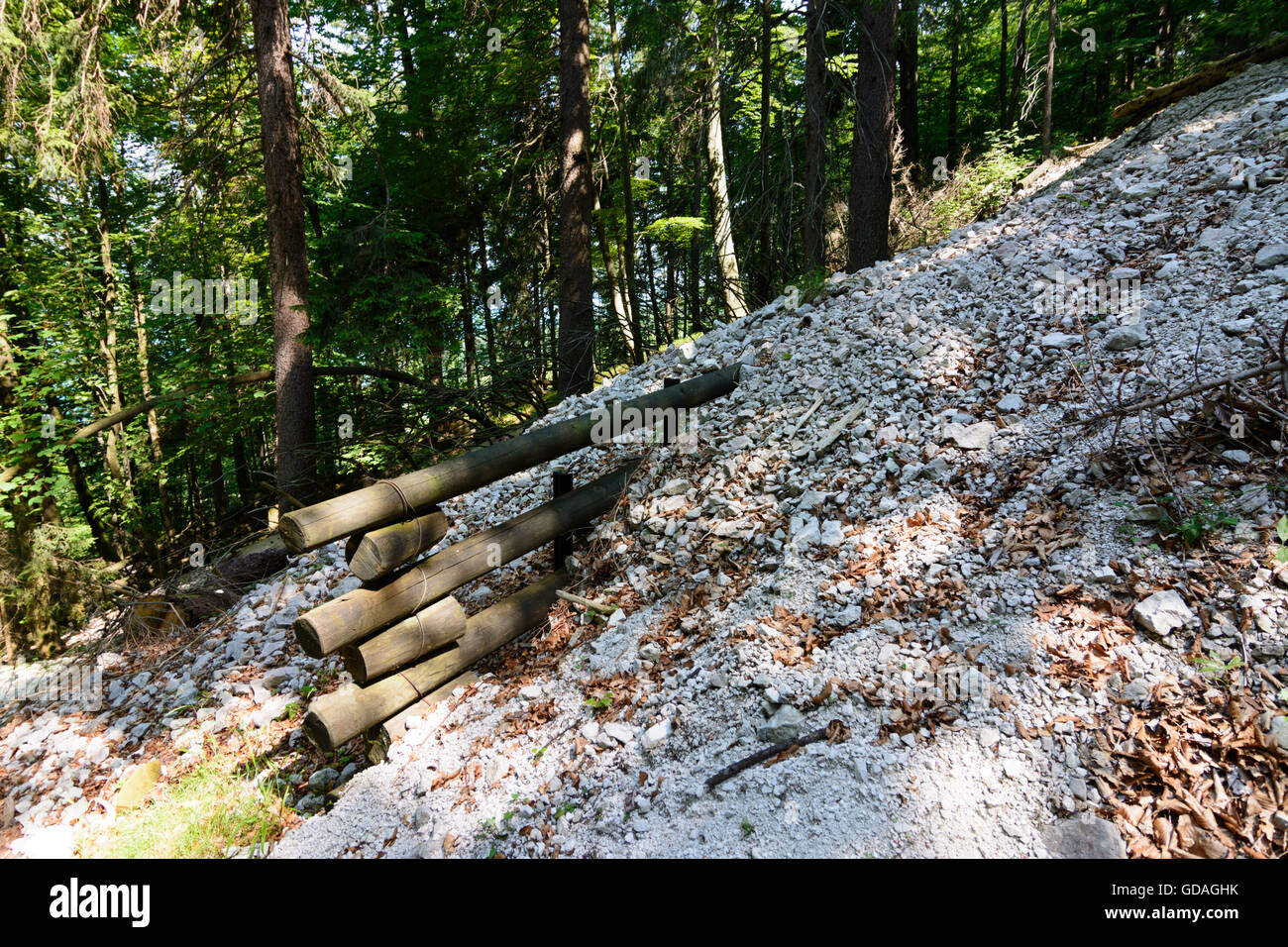 Steinbach am Attersee: Shoring against mudflows from roundwood, Austria, Oberösterreich, Upper Austria, Salzkammergut - Stock Image