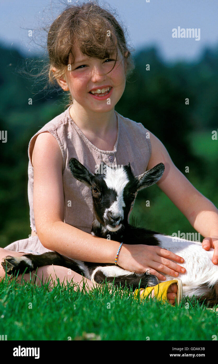 GIRL WITH PYGMY GOAT capra hircus - Stock Image