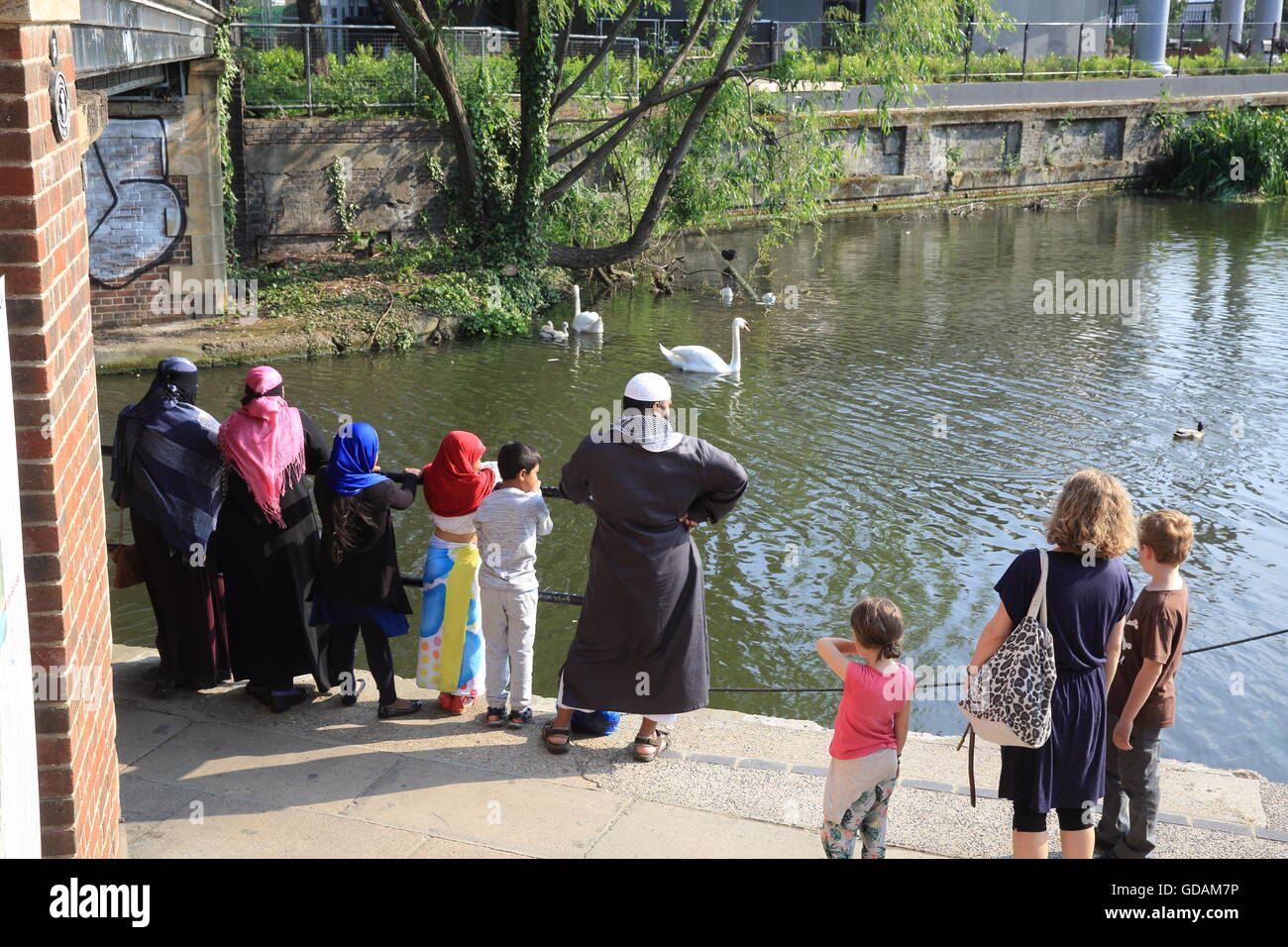A multi ethnic group watching the swans on Regents Canal by York Way, near Kings Cross, in north London, England, - Stock Image