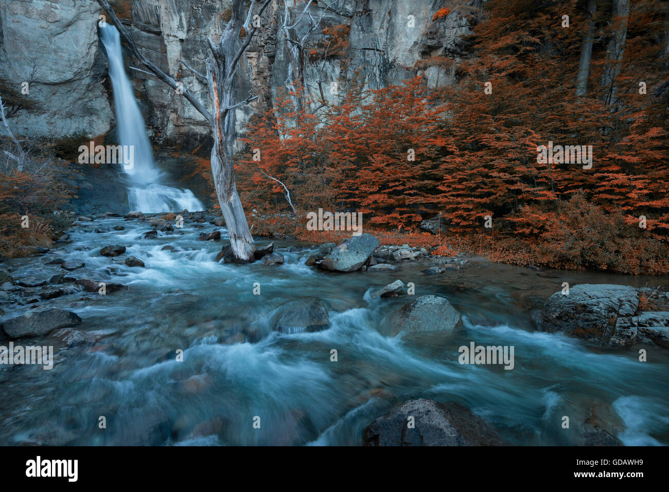 South America,Patagonia,Argentina,Santa Cruz,El Chalten,Los Glaciares,National Park,UNESCO,World Heritage,Fitz Roy,And - Stock Image