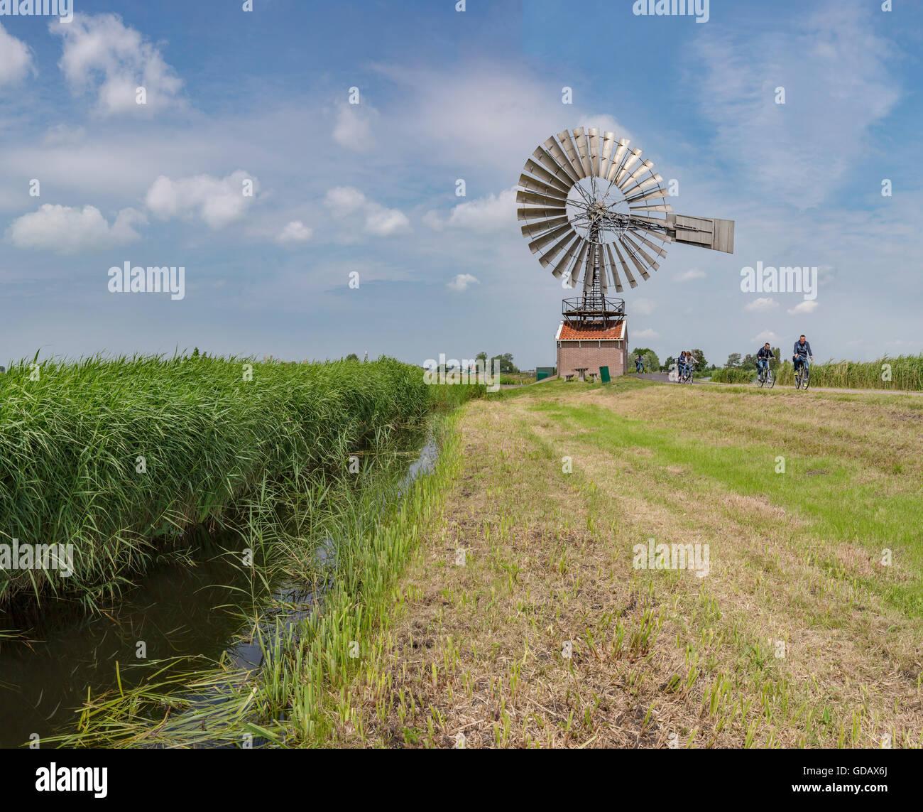 Zaandam,Noord-Holland,The metal American wind turbine Hercules - Stock Image