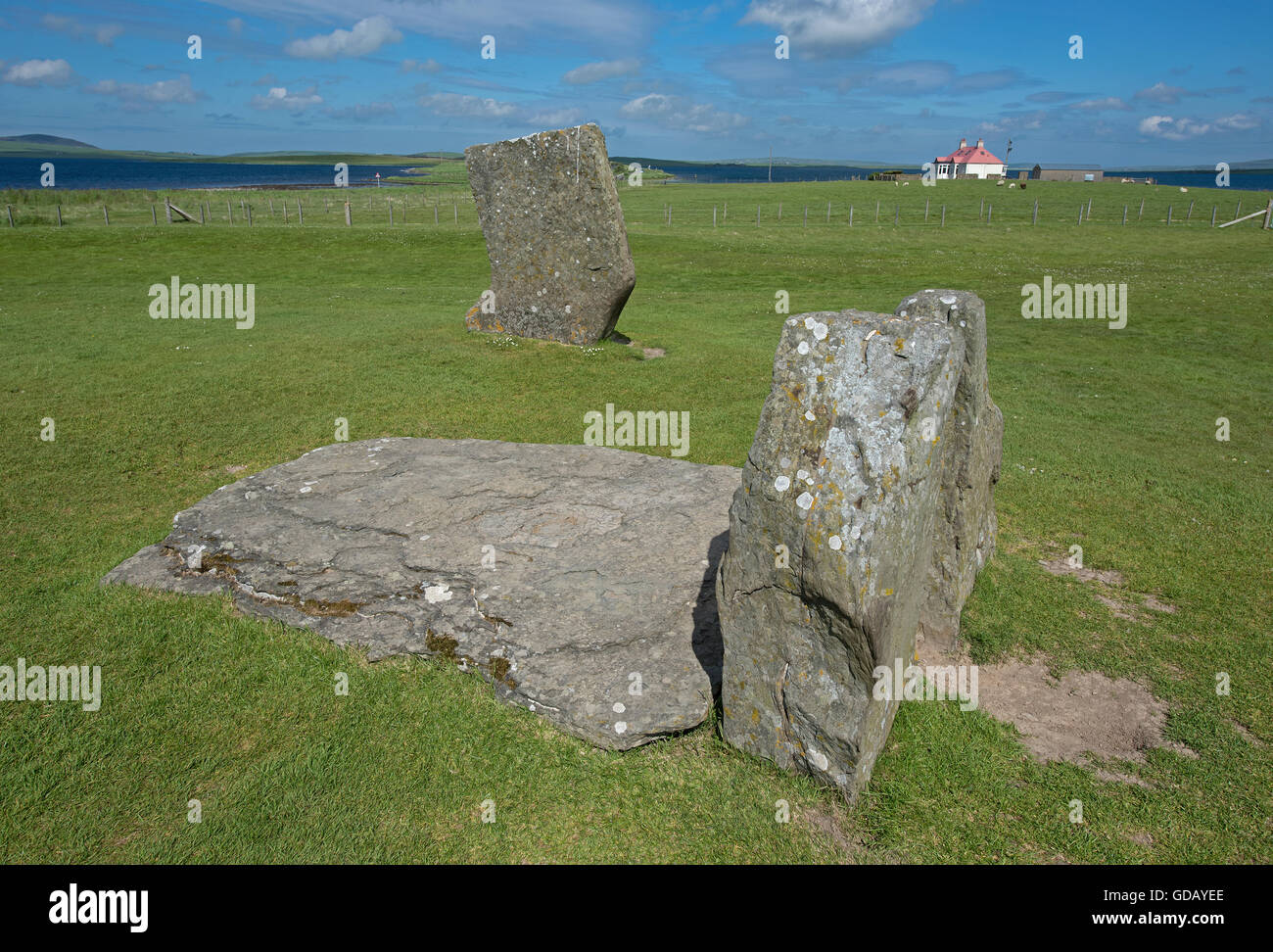 Stenness Standing Stones within the UNESCO World Heritage Site, Heart of Neolithic Orkney.  SCO 10,593. Stock Photo