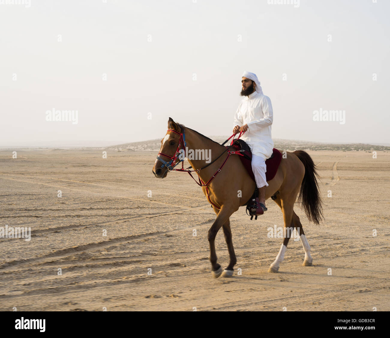 An Arab horseman prepares for the day's hunt during the Al Galayel Hunting Festival in Qatar. The annual event - Stock Image