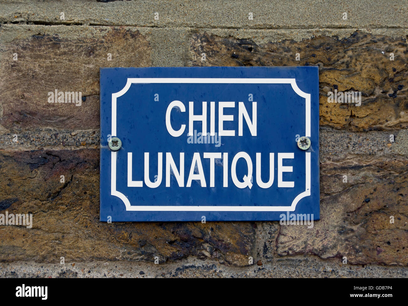 Mad Dog Sign Stock Photos Images Alamy Wiring Diagram Chien Lunatique On British House Exterior Of Warning In French A Crazy Or
