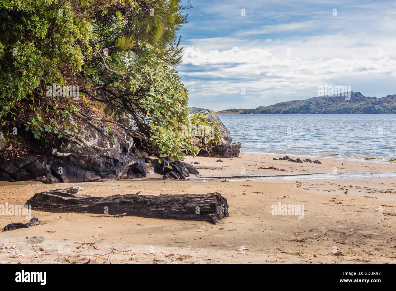 Sydney Cove Beach, Ulva Island, New Zealand - Stock Image