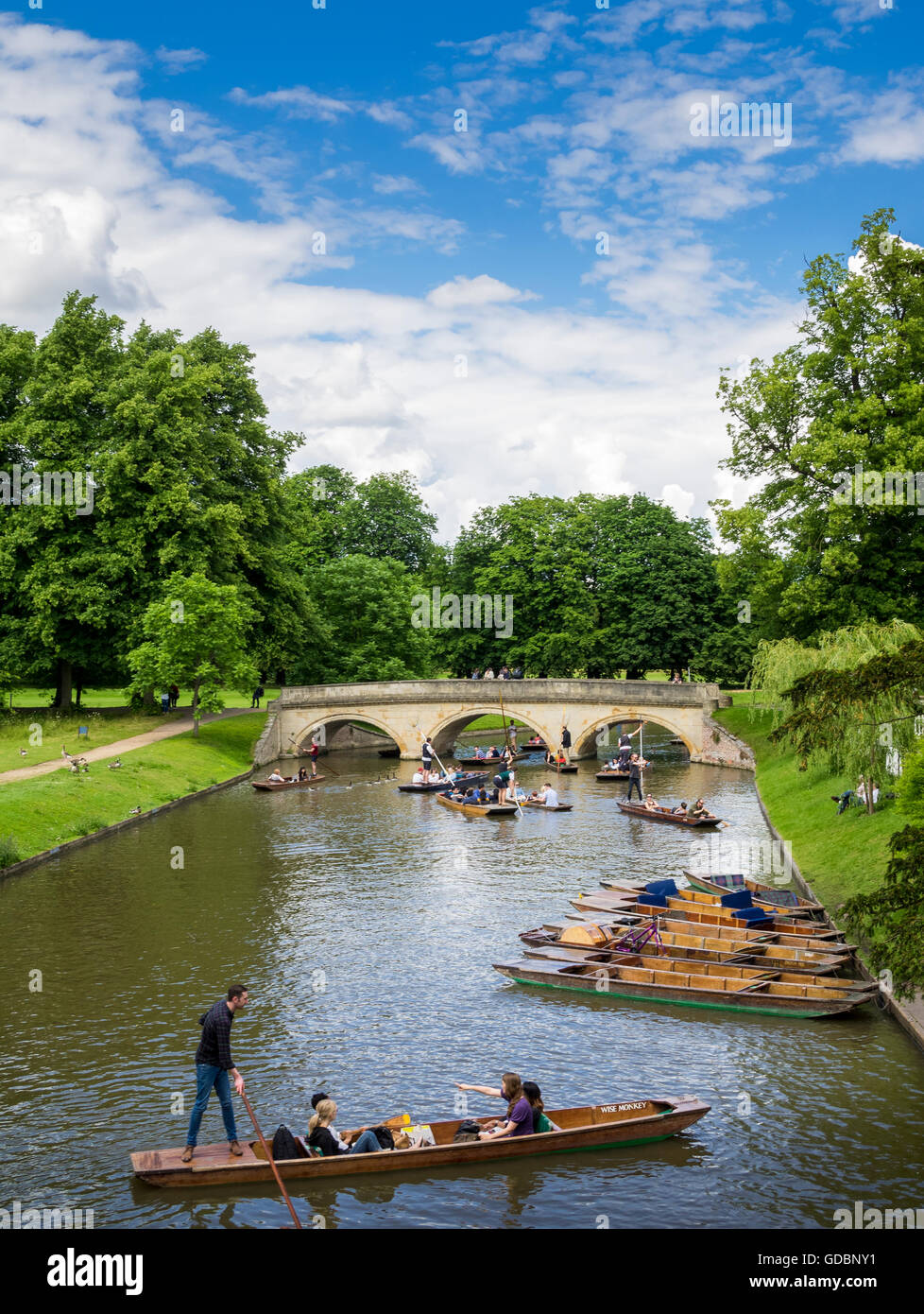 Punting on the River Cam, Cambridge, England, UK - Stock Image