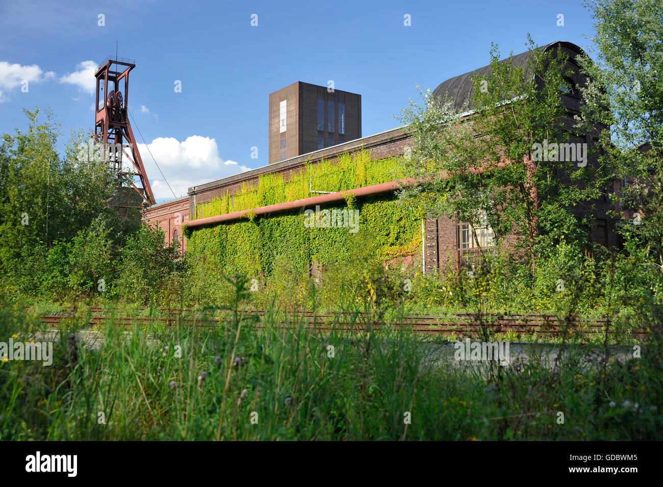 Pact building, Coal mine Zollverein, industrial memorial, Essen, Ruhr area, North Rhine-Westphalia, Germany / Industrial - Stock Image