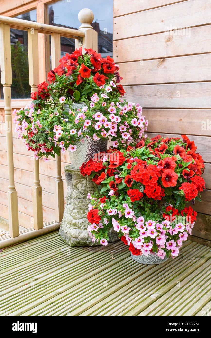 Flower Tub Hanging Basket Stock Photos & Flower Tub Hanging Basket ...