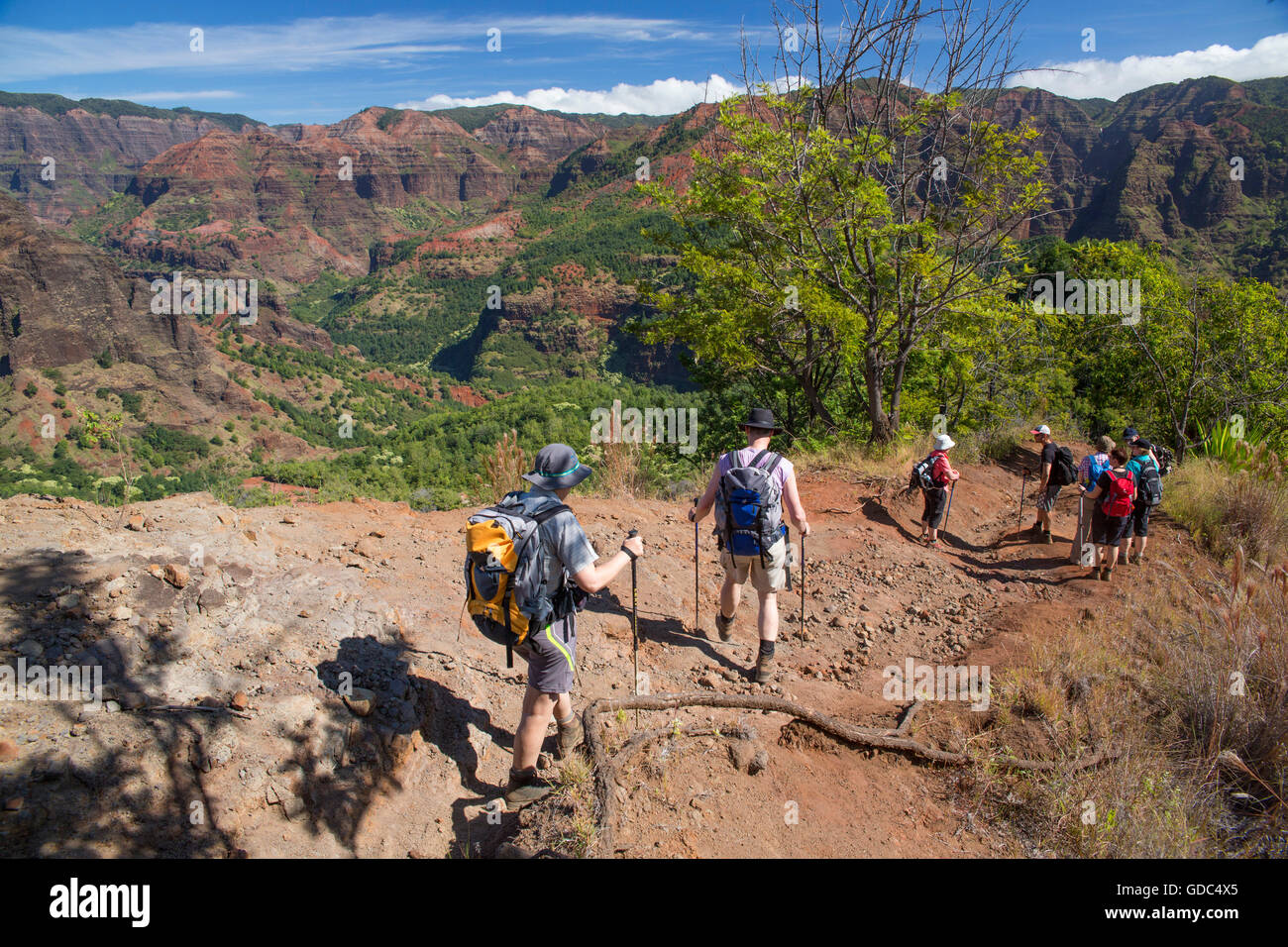 Kauai,trekking,Waimea,canyon,USA,Hawaii,America,footpath,hiking, - Stock Image