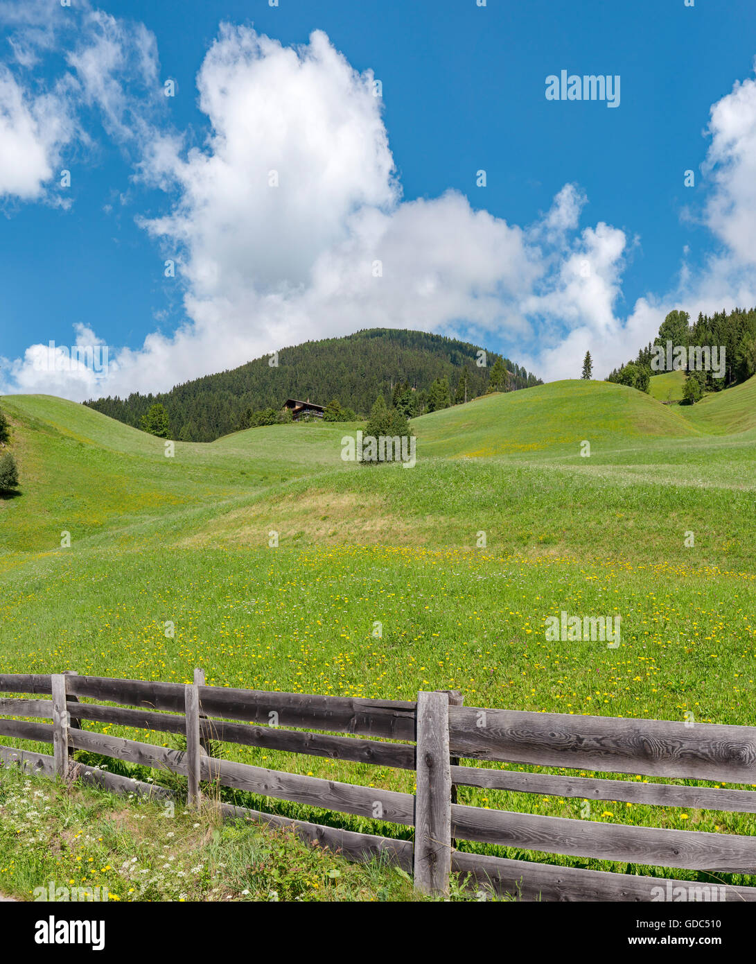 Sillian,Austria,Rolling hills at the mount Sillianberg - Stock Image