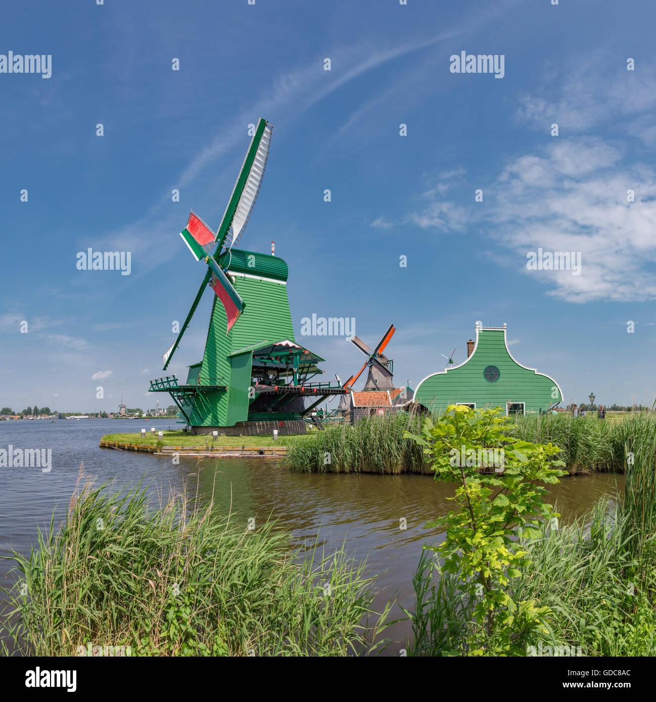 Zaandam,Noord-Holland,Windmills de Poelenburg,de Kat,de Zoeke along the river Zaan - Stock Image