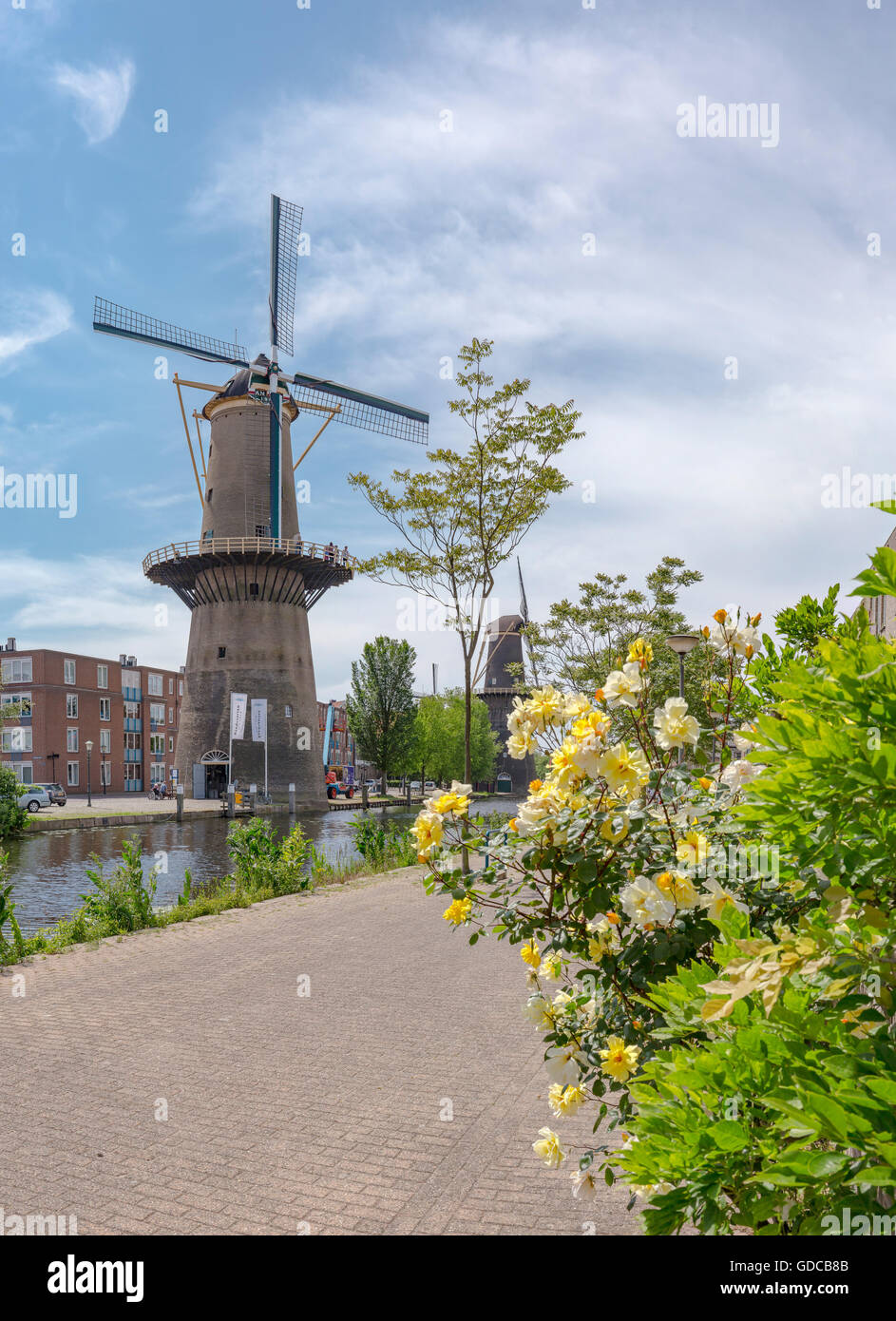 Schiedam,Tower mills at the Noordvest-canal - Stock Image