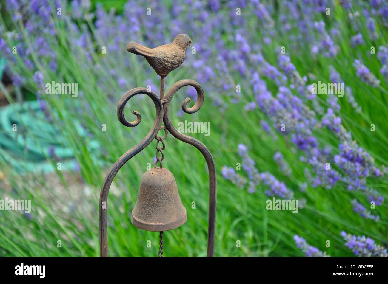 Pretty bird decorative wind chime in lavender garden - Stock Image