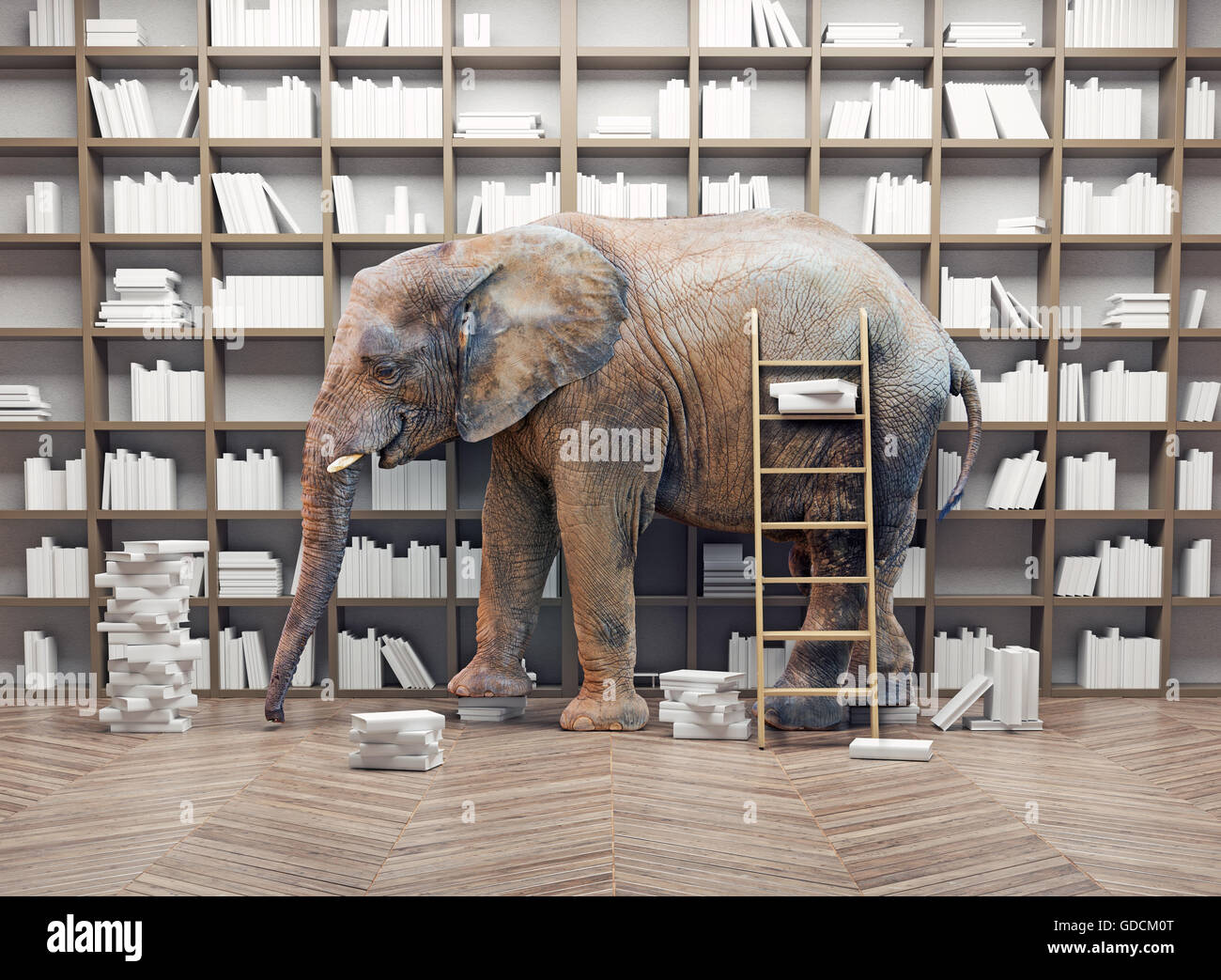 an elephant  in the room with book shelves. Creative concept - Stock Image