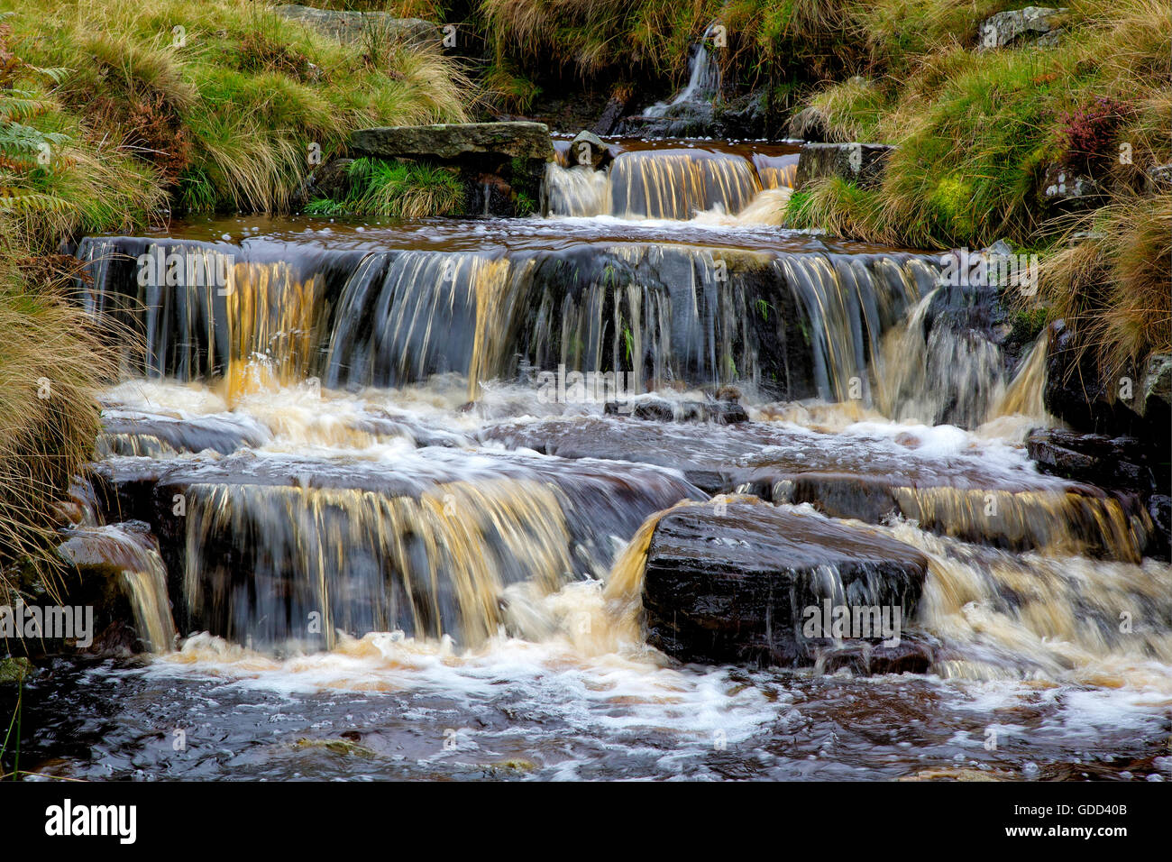 Peat laden water tumbling down waterfalls in the upper reaches of Grindsbrook a clough near Edale on Kinder Scout - Stock Image