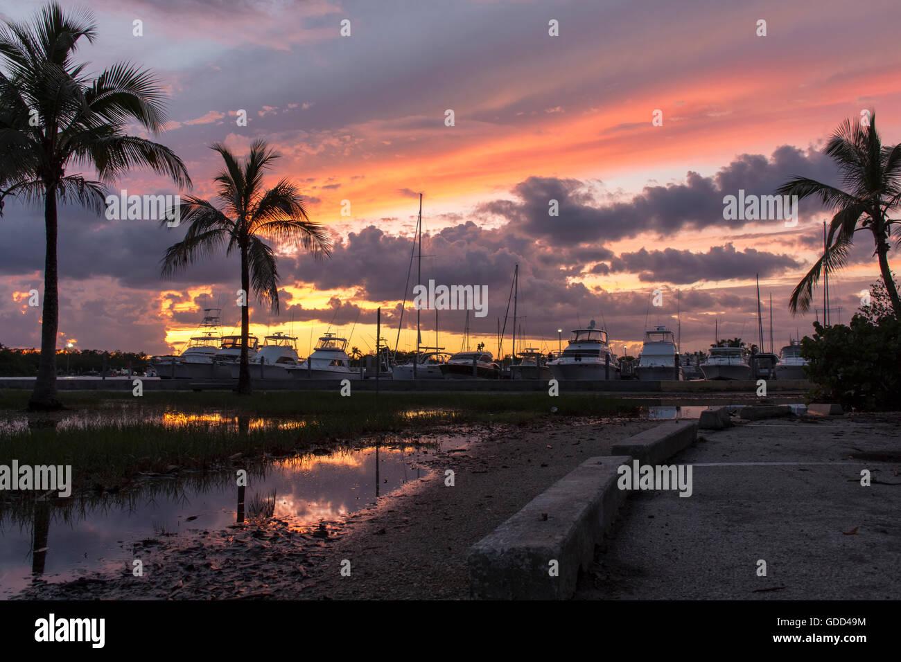Beautiful Sunset off the Matheson Hammocks Marina - Stock Image