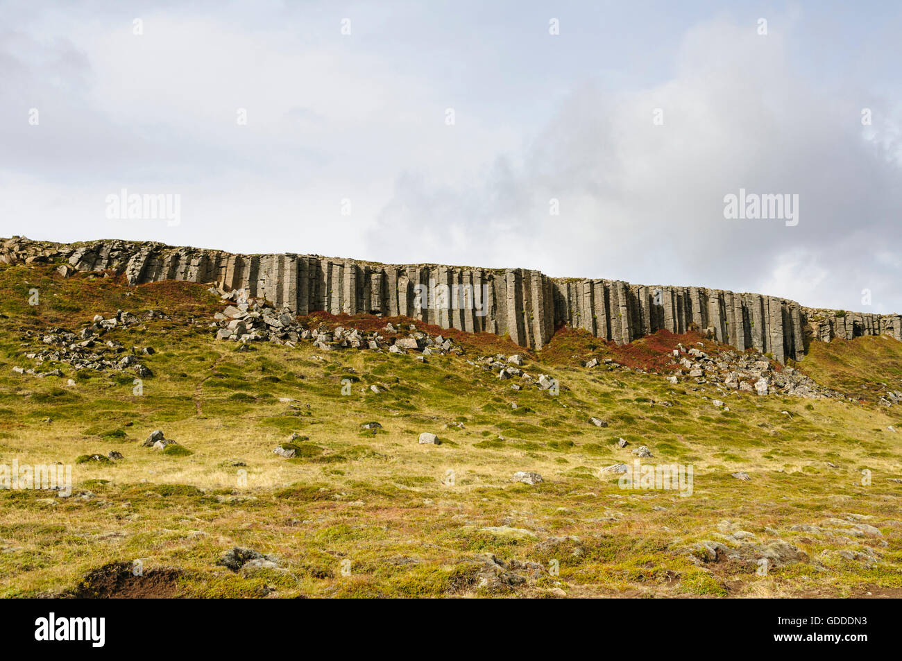 The basalt colums of Gerduberg in the valley Hnappadalur on the peninsula Snaefellsnes in west Iceland. - Stock Image