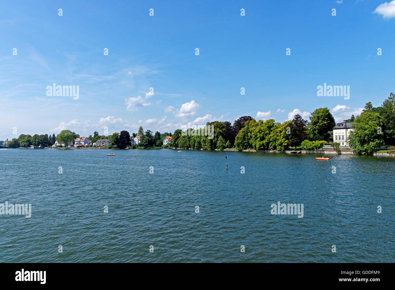 Lake Constance,Bodensee,bank line,Schildlerwiese Stock Photo