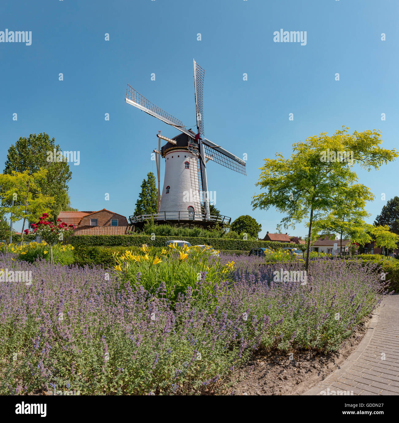 Sint-Annaland,Zeeland,White stone tower mill The Four Winds - Stock Image
