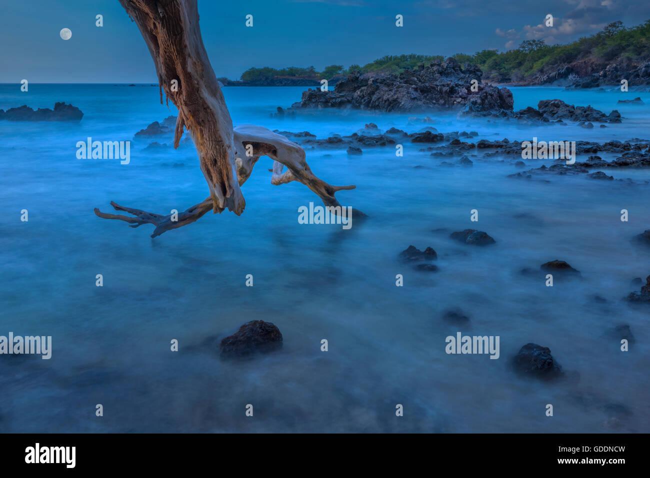 Usa Vereinigte Staaten Amerika Hawaii Big Island Hapuna