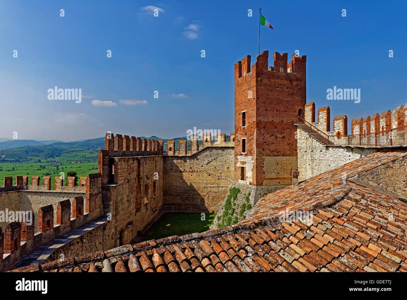 Scalierburg,Castello Medievale,vineyards Stock Photo