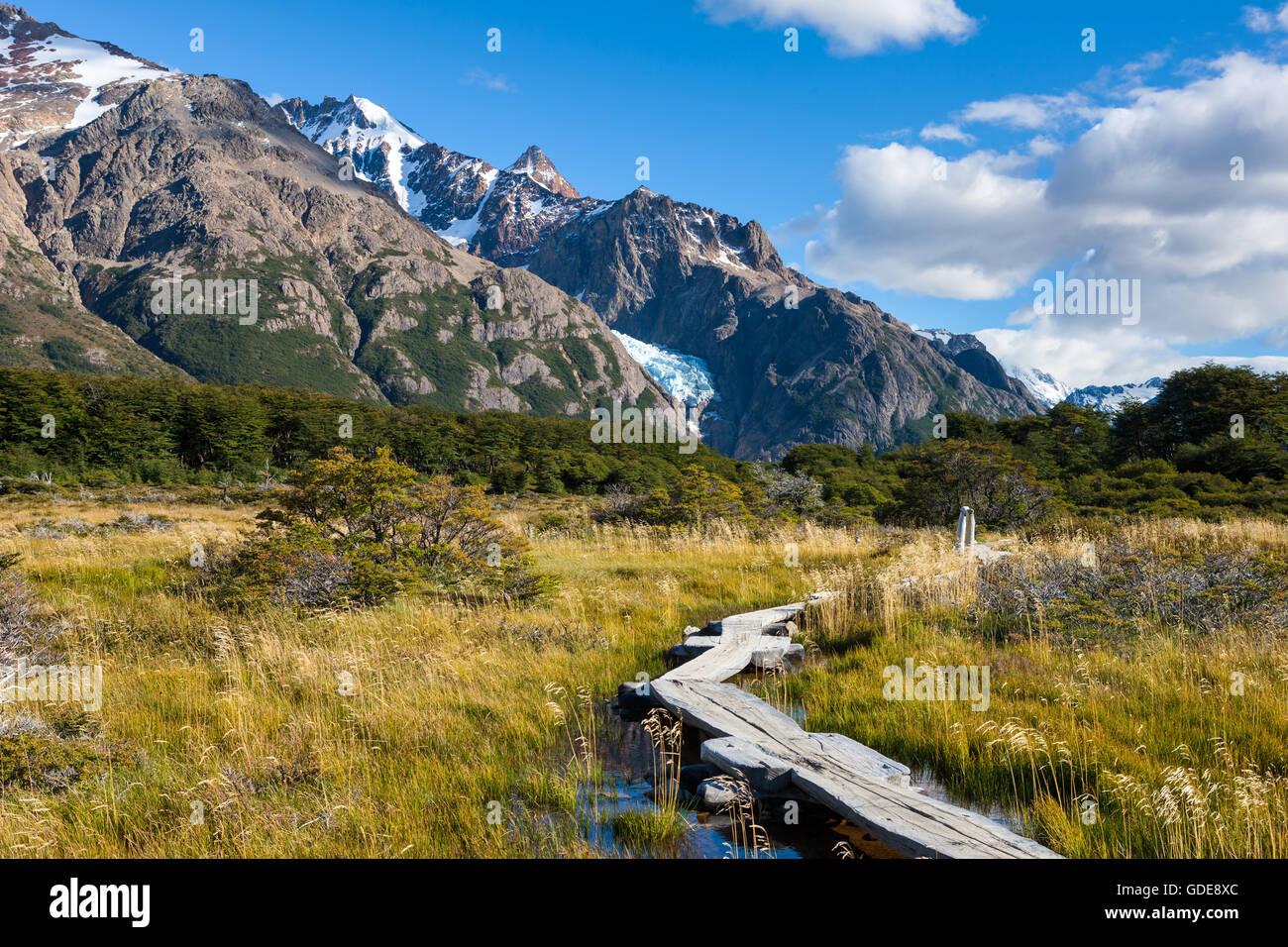 Patagonia,nature,Argentina - Stock Image