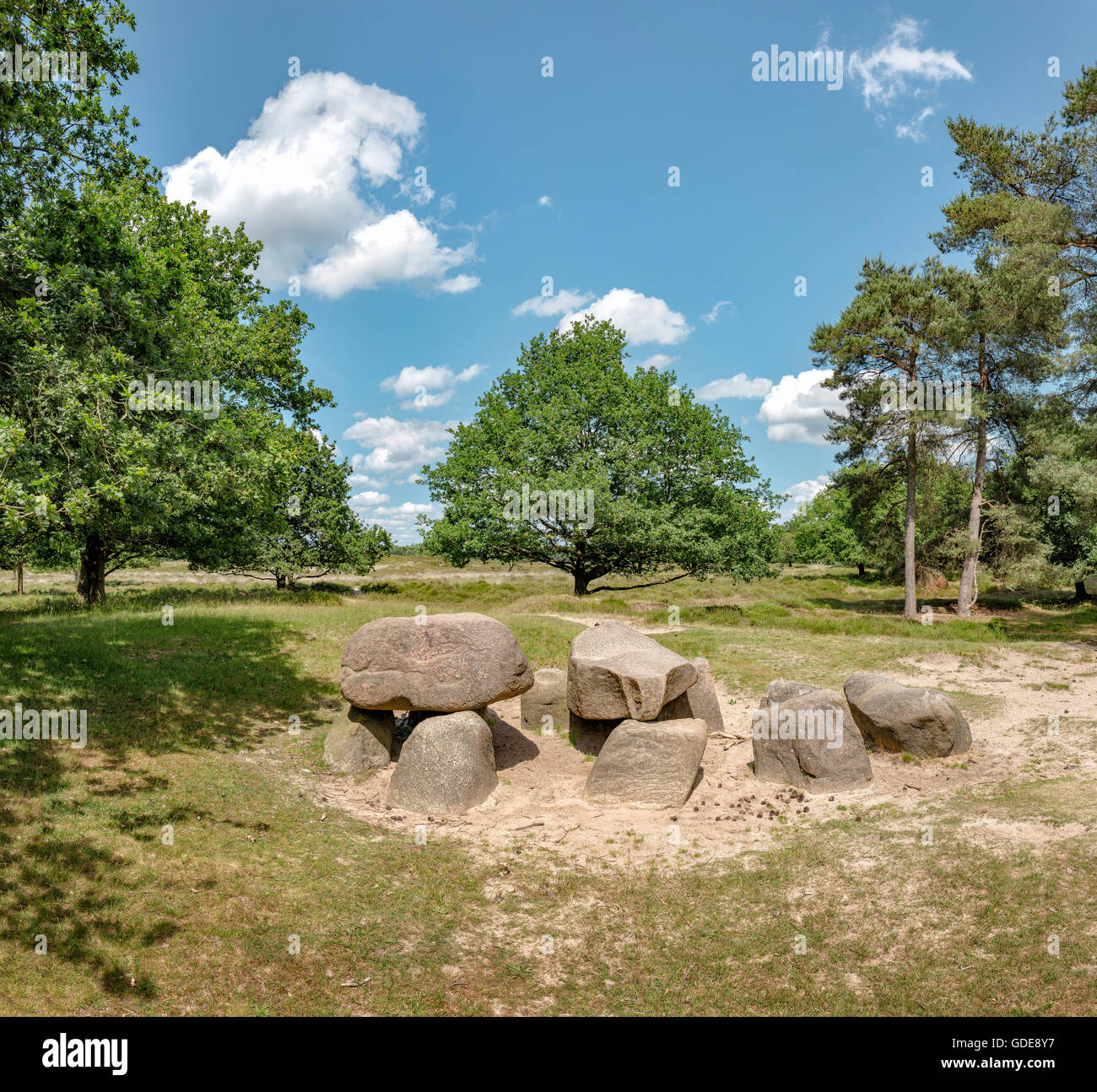 Gasteren,Drenthe,Megalithic grave in the Gasteren Dunes natural area - Stock Image