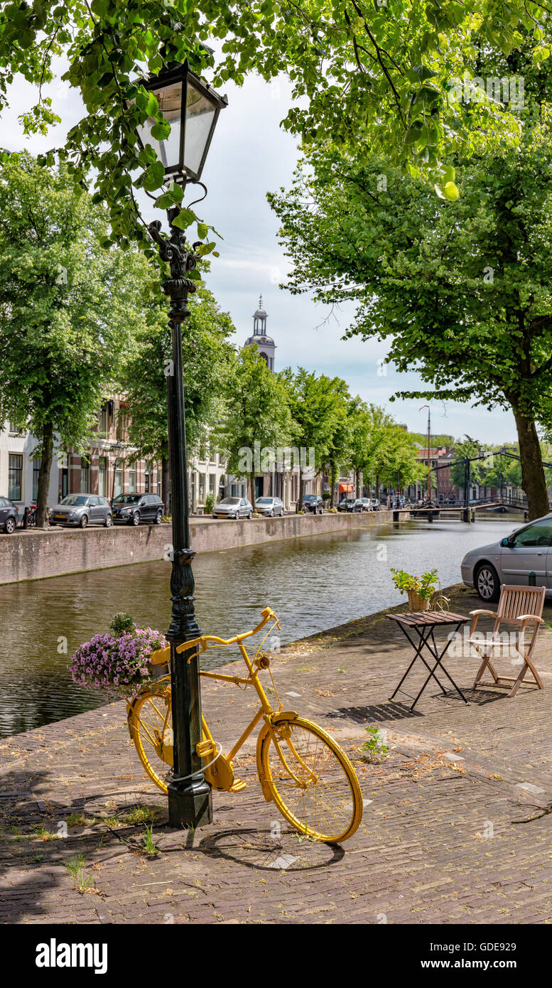 Schiedam,Yellow bicycle as flower stand at the quay of the Lange Haven canal - Stock Image