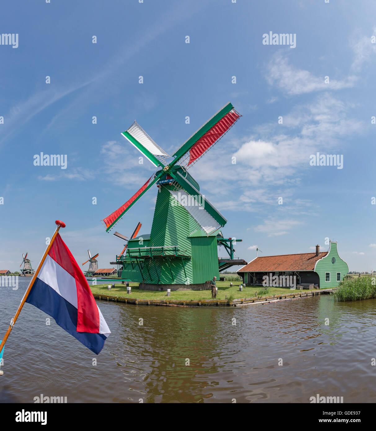 Zaandam,Noord-Holland,Windmills de Poelenburg,de Zoeker,het Jonge Schaap - Stock Image