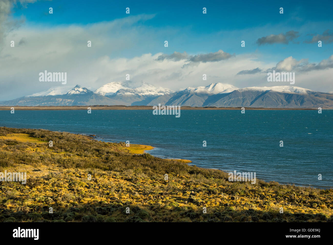 South America,Argentina,Patagonia,Santa Cruz,Puerta Bandera,Lago Argentino Stock Photo