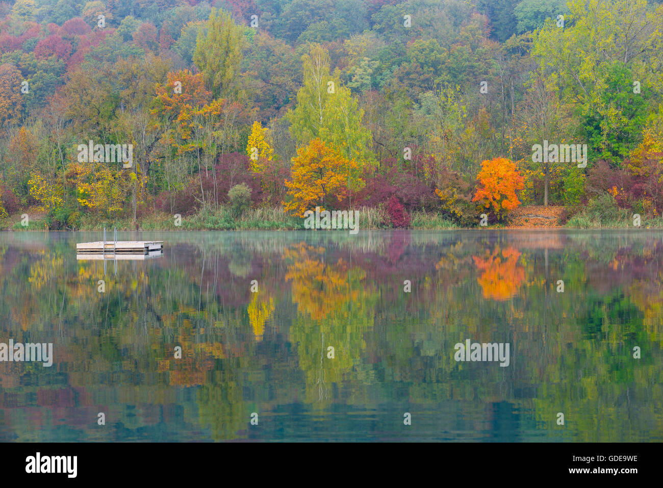 quarry pond,Bavaria,trees,Germany,Europe,water,autumn,autumn scenery,autumnal,autumn wood,deciduous forest,nature,Ne Stock Photo